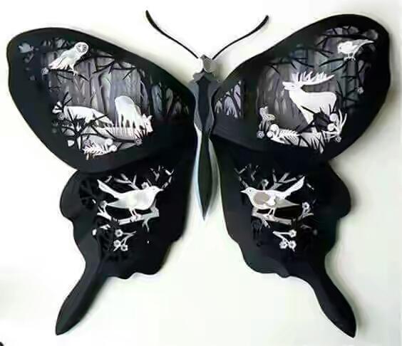 Shadow Box: Cánh bướm đêm
