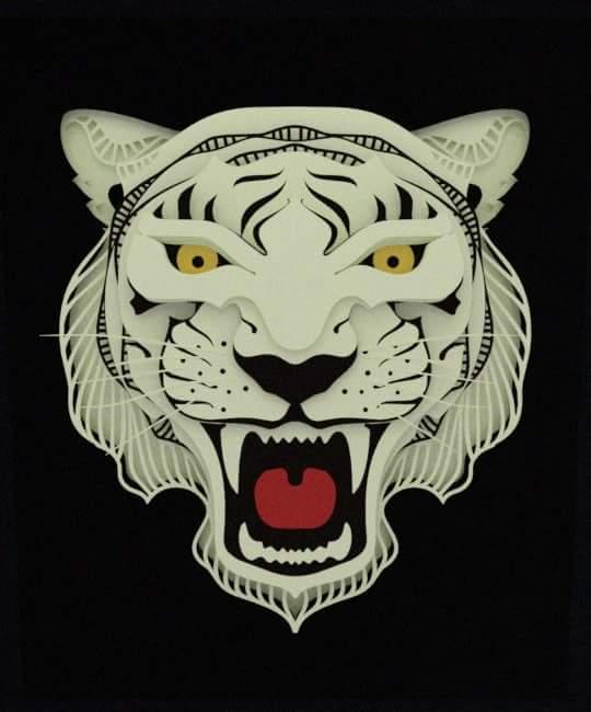 White Tiger : Sư tử trắng